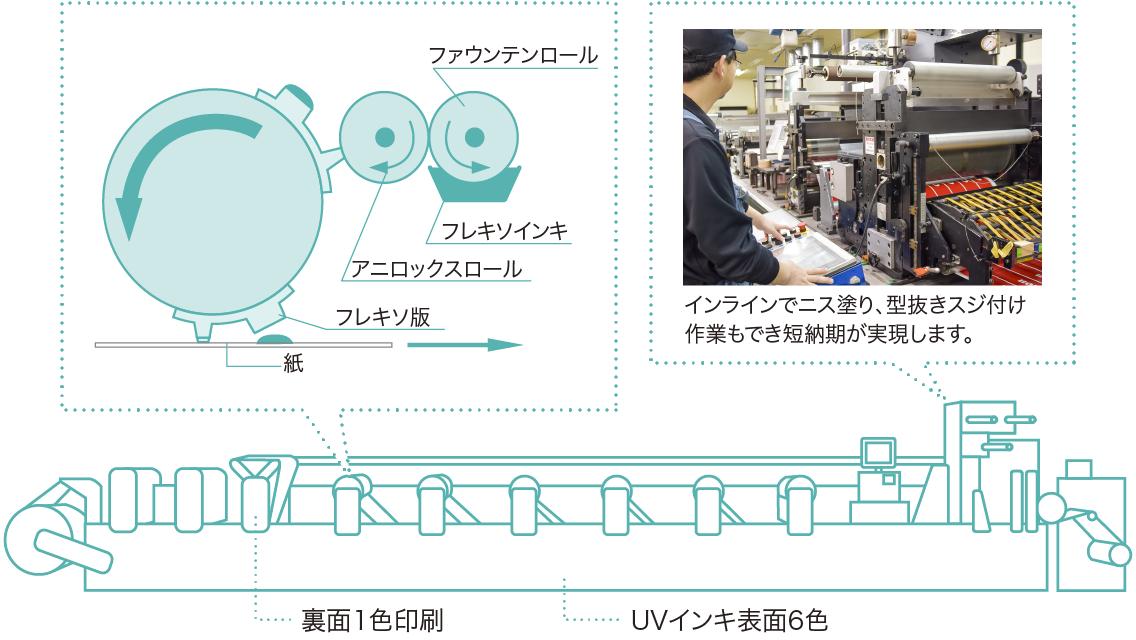フレキソ印刷の構造図解